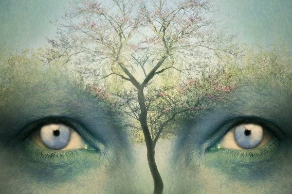 Beautiful artistic fantasy background representing a two human eyes and a tree