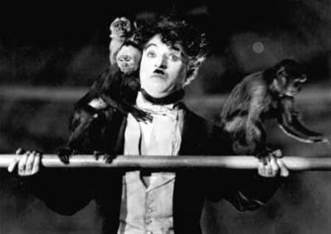 circus-chaplinmonkeys