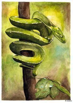 ef5b07eb353aee0690662f2152065738--a-snake-marianne