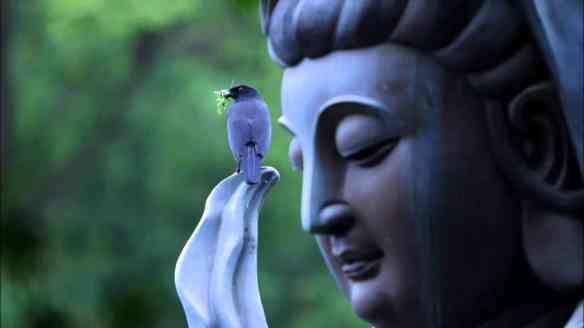Great-Compassion-Buddha-Kuan-Yin-Statue-min