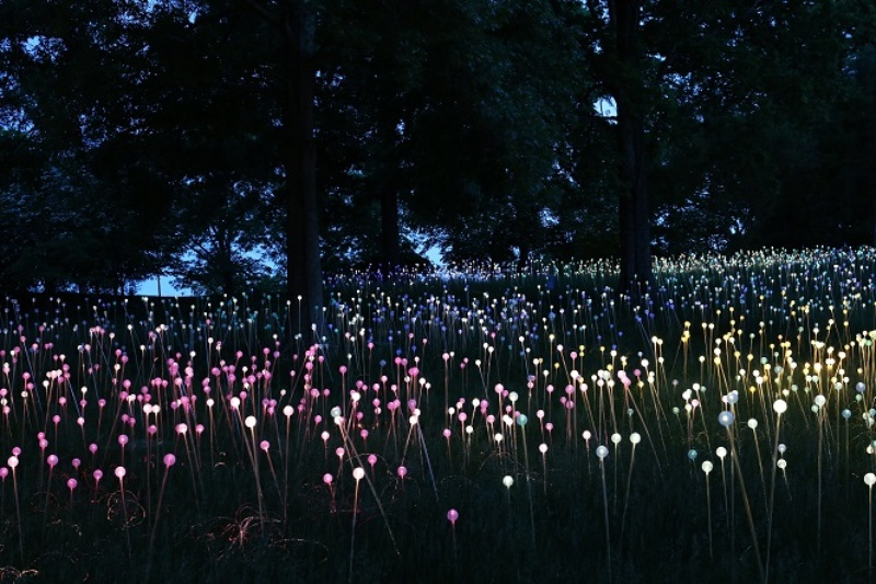 Discovery-Green-art-installation-Field-of-Light-by-Bruce-Munro_130500